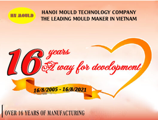 Hanoi Mould -16 years – A way for development